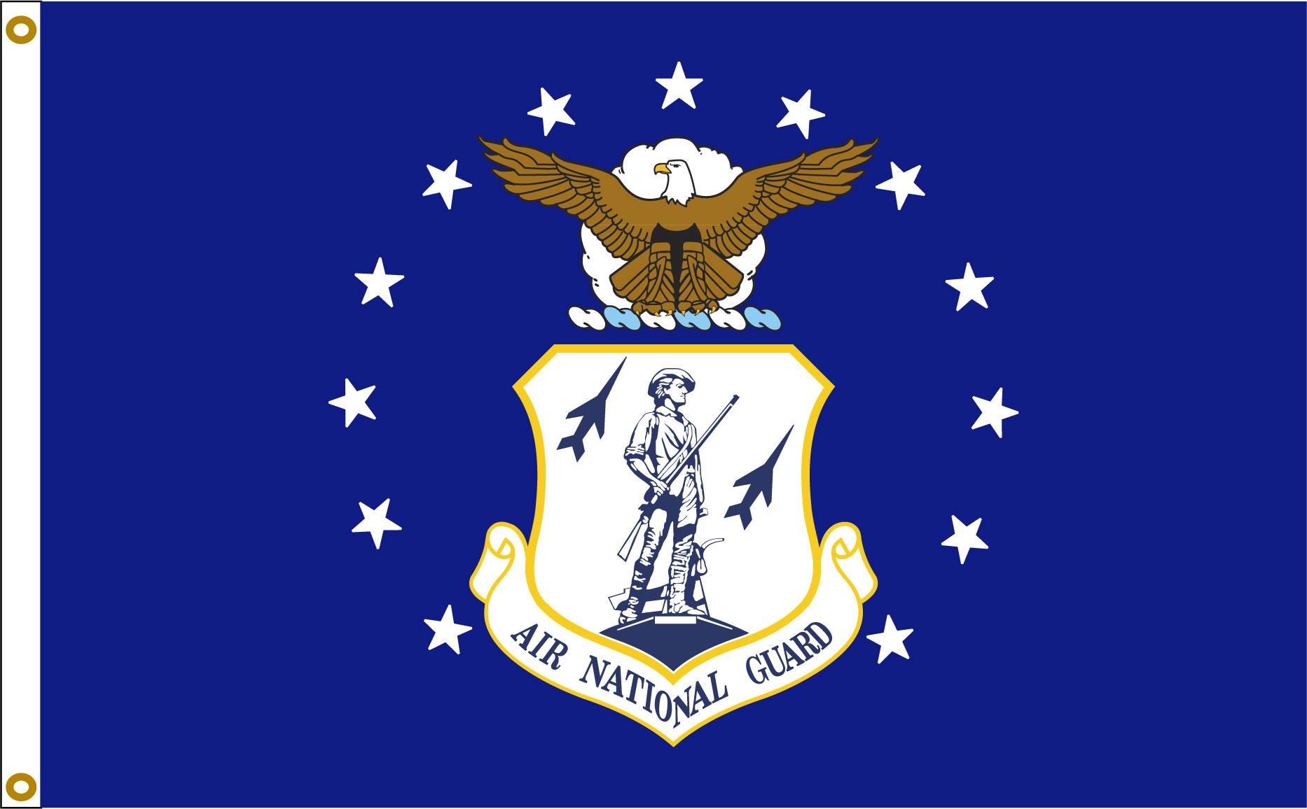 Air National Guard 3_5 flag